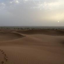 Wüstenfahrt: Sonnenaufgang über unserem Camp