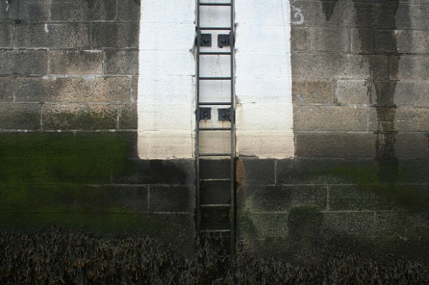 corporate ladder image