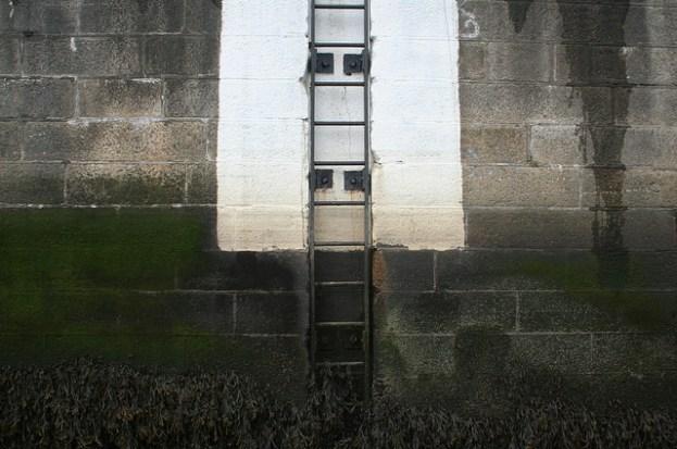corporate ladder image