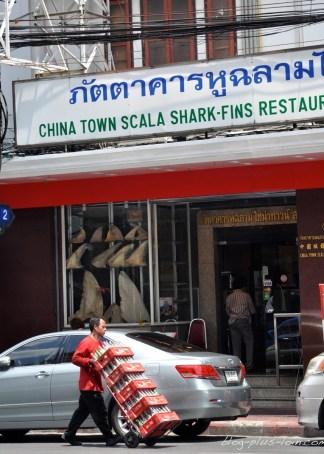 Resto d'ailleron de requin, à Chinatown, à Bangkok.
