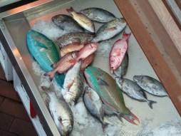 Poissons au marché de Tahiti.