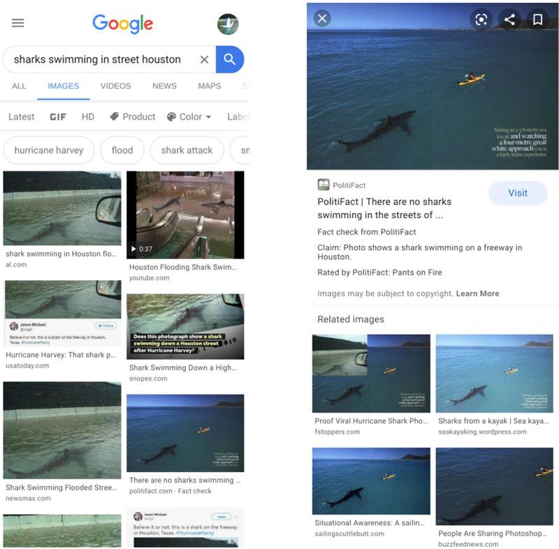 vérification des faits google images