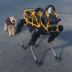 Boston Dynamics : les robots prennent le pouvoir