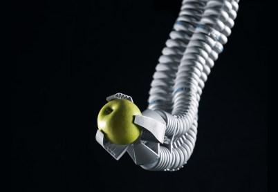 """Résultat de recherche d'images pour """"festo bionics"""""""