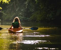 Voyage, sport, nutrition, font-ils le bonheur ?