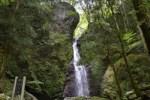 【高知で登山】初心者がおひとり様で梶ヶ森ハイキングに行ってきた感想^^! その1