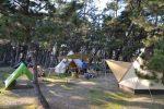 【高知でキャンプ】高知市内のキャンプ場と言えば「種崎 千松(せんしょう)公園キャンプ場!」