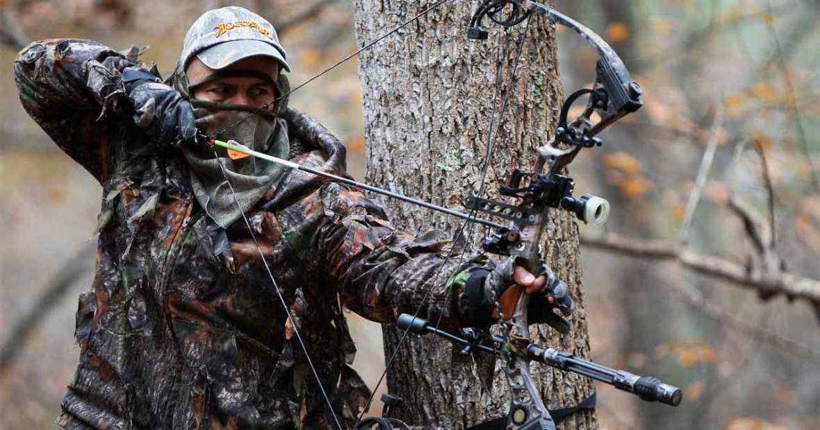 Which Type of Bow is Right for Me - Compound Bow