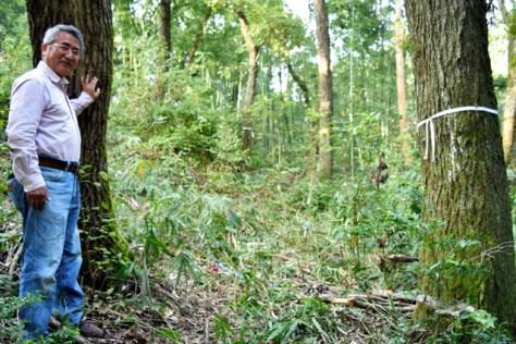 樫を植樹する山林に立つ一箭順三さん。「50年以上の事業になる」と話す=奈良県上牧町