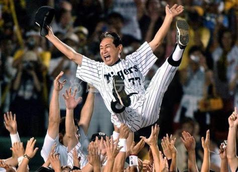 優勝を決め、ナインに胴上げされる阪神タイガースの星野仙一監督=平成15(2003)年9月15日、甲子園球場