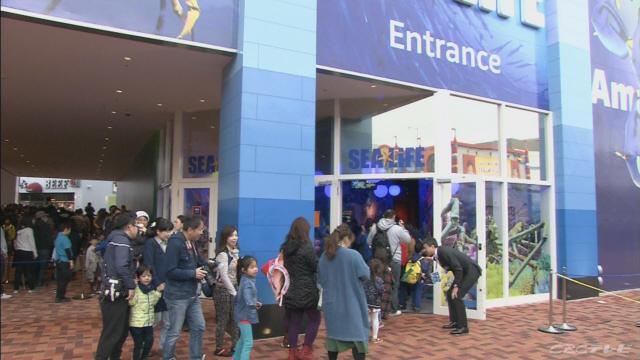 レゴランドシーライフがオープン 名古屋市港区 | CBC NEWS(CBCニュース) | CBCテレビ