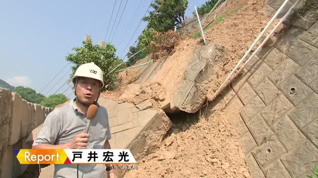 広島レモン 土砂と猛暑で新たな課題 | RCCニュース