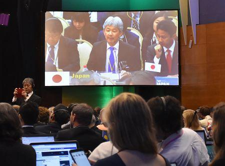 スクリーン中央に映し出された、IWC総会で演説する日本政府の代表代理=14日、ブラジル・フロリアノポリス