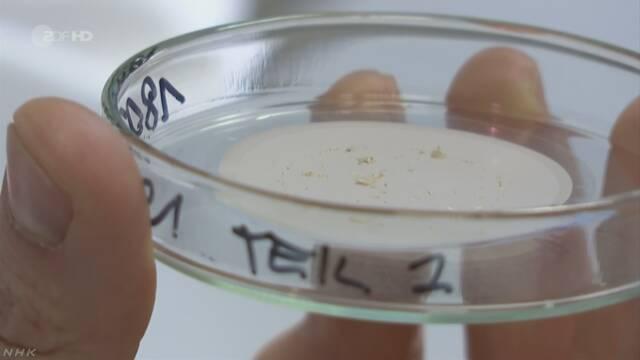 """ヒトの体内から""""マイクロプラスチック""""検出と発表"""