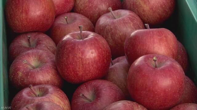 一度に5000個も…青森でりんごが大量盗難 | NHKニュース