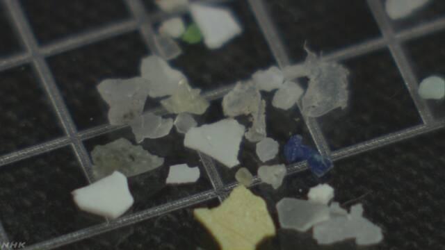 マイクロプラスチック 来年度 河川や湖で国が初の実態調査へ