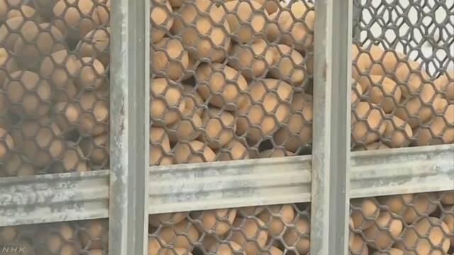 ジャガイモ?実は手りゅう弾 香港のポテトチップス工場