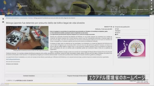 エクアドル クモやサソリの標本持ち出そうとした日本人 拘束か
