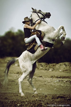 Horse Rider XI  54ka [photo blog]
