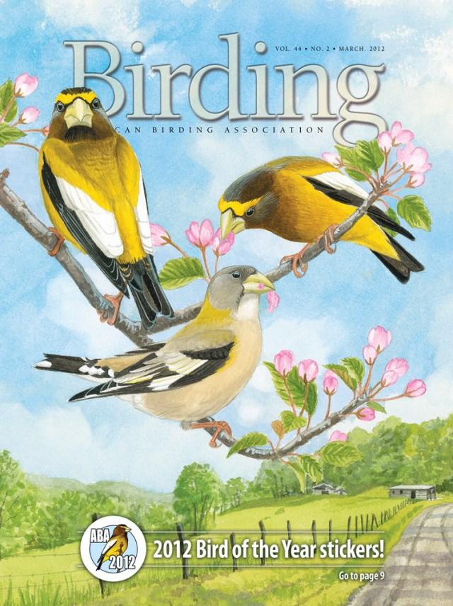 Birding 12-2 cover2