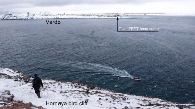 Gullfest basecamp from Hornoya TAmundsen Biotope