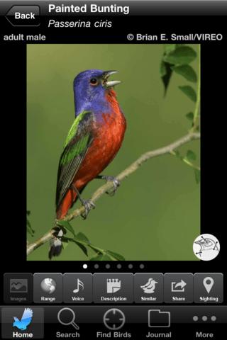 12-5-15-04a [Audubon-app]