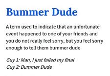 01a Bummer Dude