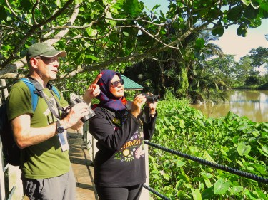 The author, left, and Maimunah Sharif, right, Mayor of Seberang Perai, study a Collared Kingfisher at the Air Hitam Dalam Education Forest, a coastal mangrove forest on the west coast of peninsula Malaysia. Photo by © Andrew J. Sebastian.