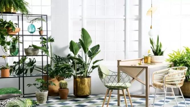 zielone wnętrze, pantone greenery,  pantone, trendy kolorystyczne 2017, wiosenne dekoracje do mieszkania,