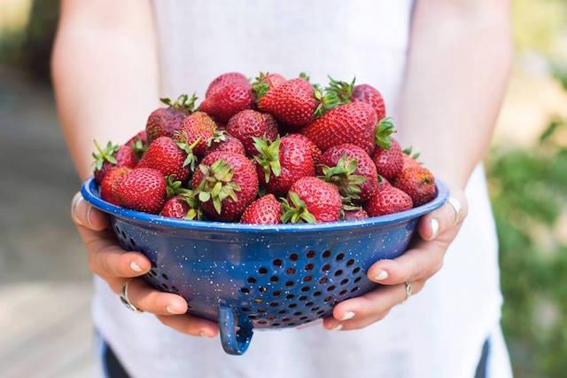 CharlotteStrawberries