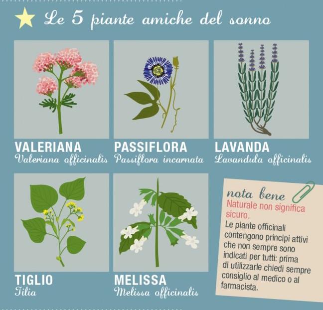 Hdemia SantaGiulia - il blog