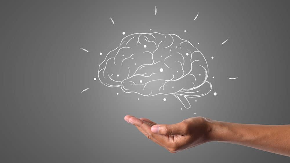 Comment programmer son cerveau pour maigrir ? Actinutrition