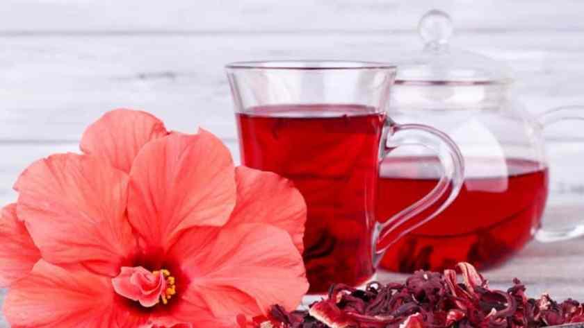 bienfait hibiscus