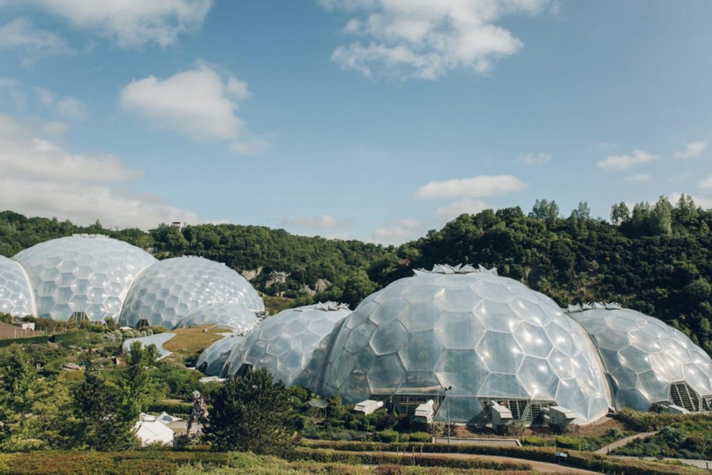 Visit a Local Greenhouse During the Holiday Weekend