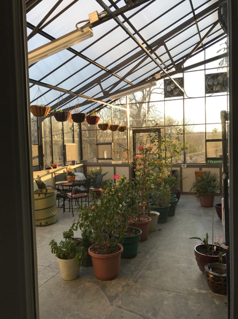 What Tools Do You Need in Your Greenhouse?