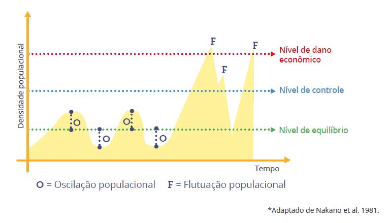 nível de ação mip