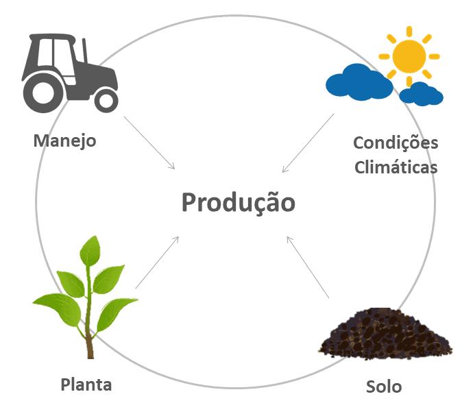 produção-fertilidade-solo