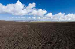 análise-química-do-solo