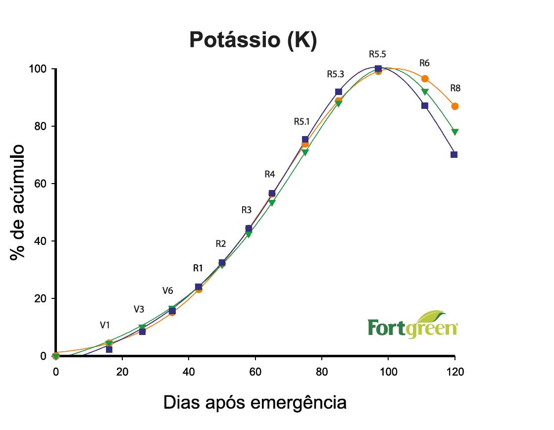 3-marcha-absorção-potássio