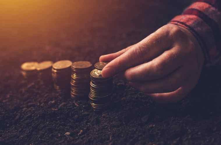 contabilidade-agricola