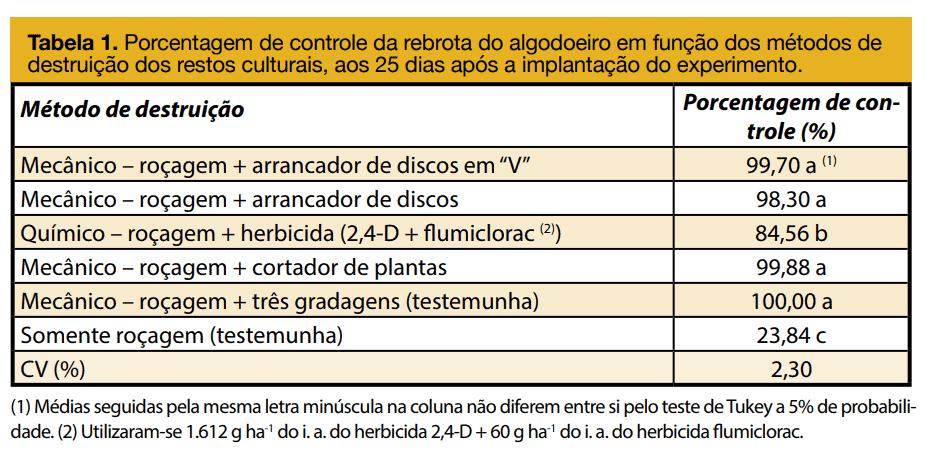 4-planta-de-algodão