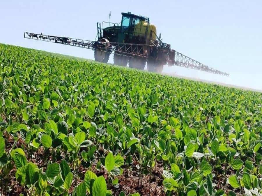 herbicidas para soja