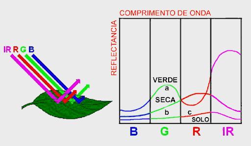 Diferentes assinaturas espectrais