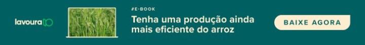 banner ebook produção eficiente de arroz