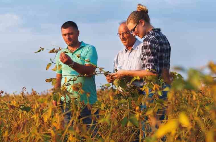 gestão de pessoas no agronegócio