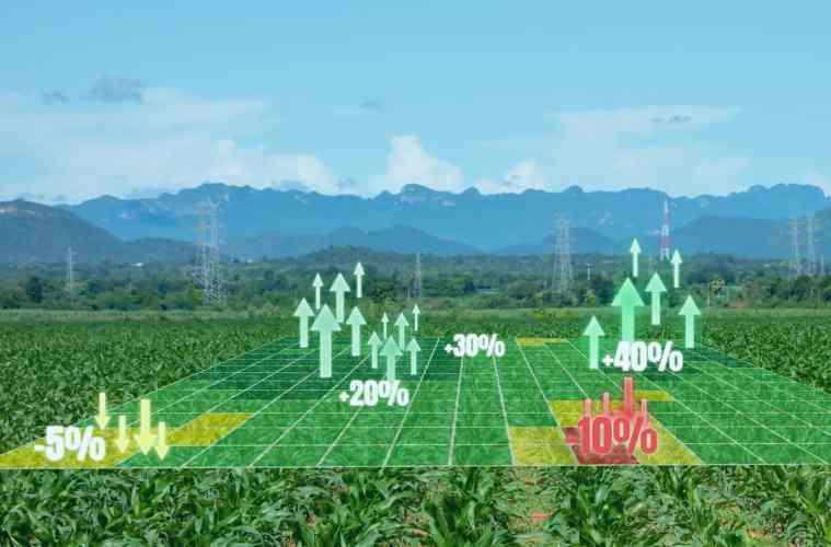 mapeamento de fertilidade do solo
