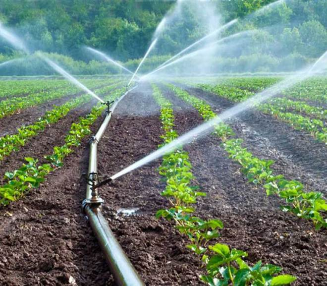 Maximizing the Dry Season for Farming