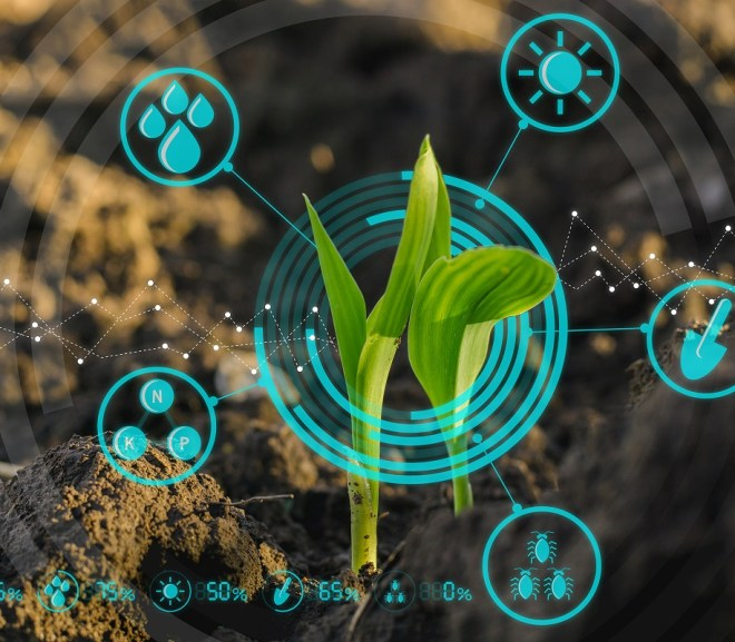 The Emerging Data Revolution in Agriculture and Farm Business in Sub-Saharan Africa