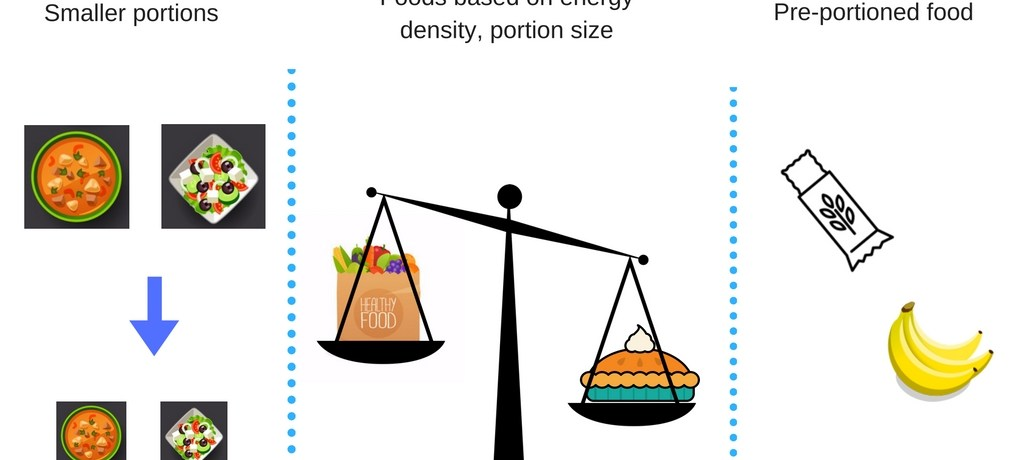 Portion Size, Energy Density and Losing Weight – What Works
