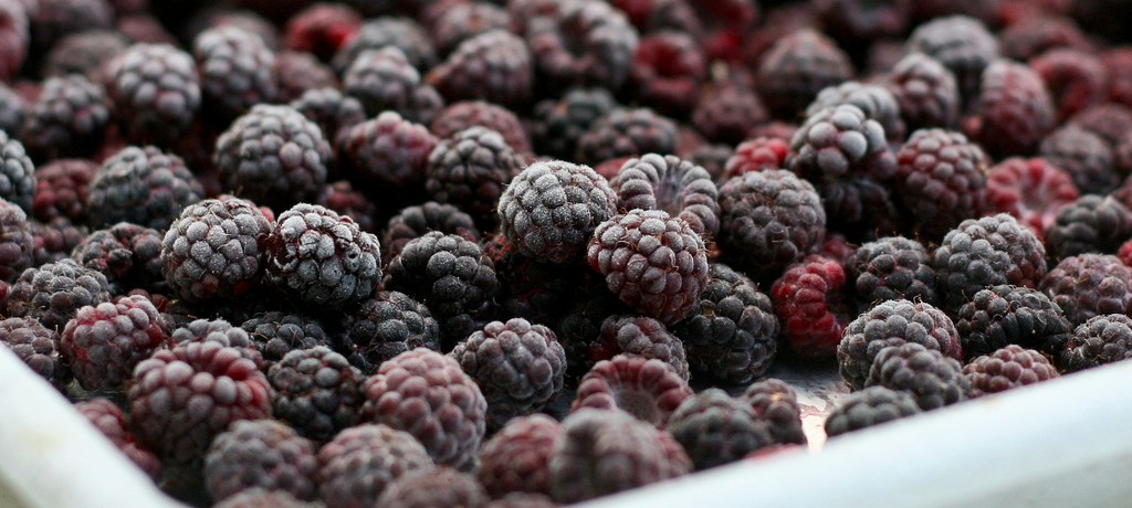 Animal Study Identifies How Black Raspberries May Lower Oral Cancers
